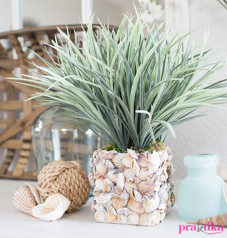 Another-seashell-planter-vase.jpg