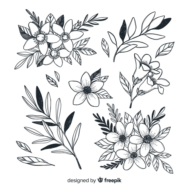 beautiful-flowers-collection-hand-drawn-style_23-2148319666.jpg